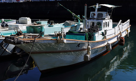 販売漁船4