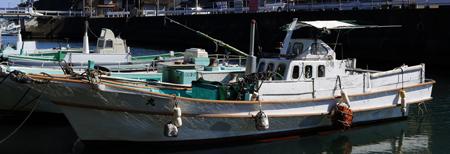 販売漁船5